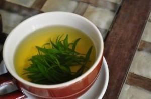 tea-time-estragon_19-116359
